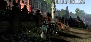 Find the gnomes in Fable III hidden in Silverpines and Mourning Wood