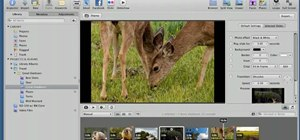 Set up complex slideshows in Apple Aperture 3