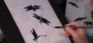 Draw dragonflies in Chinese painting