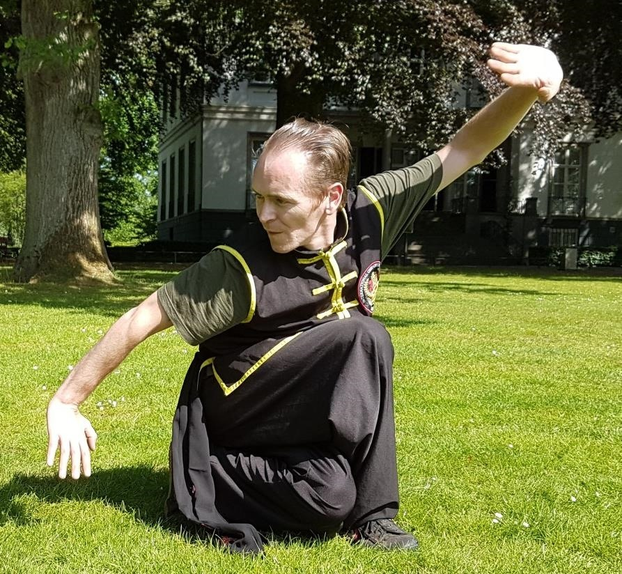 How to Learn Five Animal Kung Fu, Ng Ying Kungfu