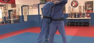 Perform a hip throw in judo