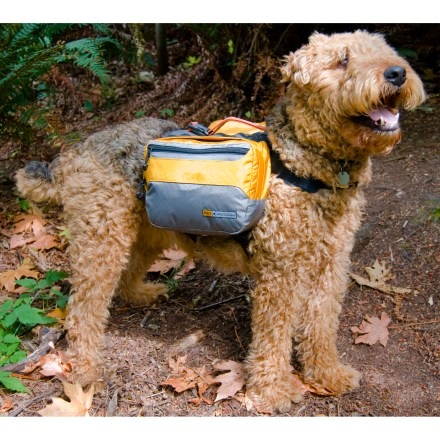 Dog Camping Gear a.k.a. HowTo spoil your dog