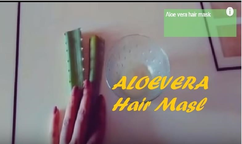 How to Make a Aloe Vera Hair Mask