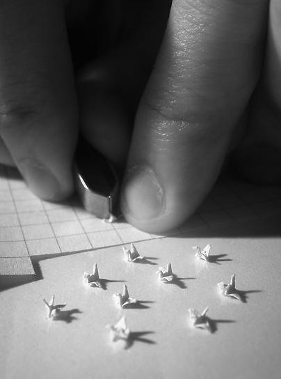 Microscopic Origami