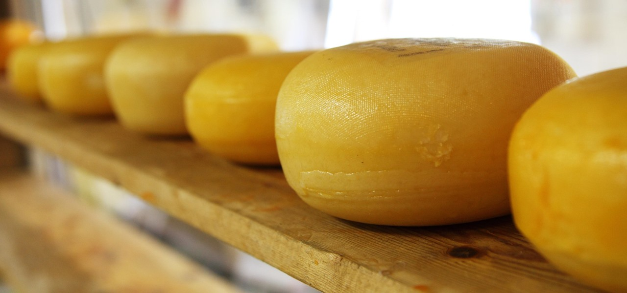 Artisanal Cheese Reveals Microbial Secrets of Deliciousness