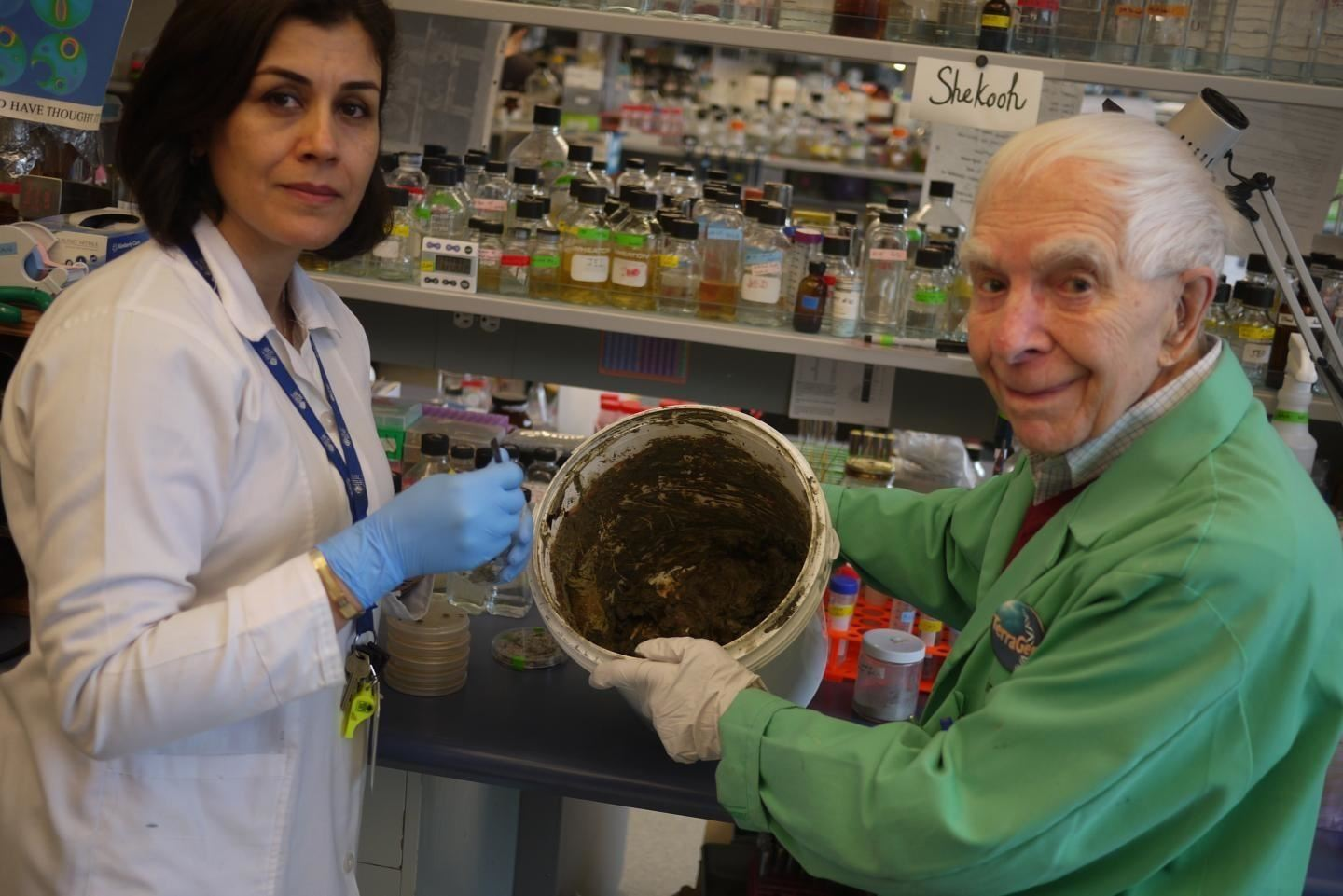 Unexpected Microbial Life in Glacial Clay Could Offer Antibiotic Solutions