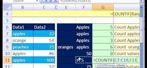 Use the COUNTIF function in Microsoft Excel