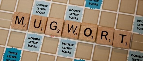 scrabble two letter words how to score big with simple 2 letter words in scrabble 24773 | score big with simple 2 letter words scrabble.w1456