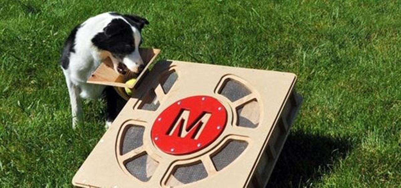 Keep Your Dog Entertained All Day Long with the Fetch-O-Matic Ball Launcher