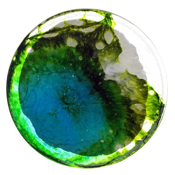 Science Inspires Art: 365 Amazing Petri Dish Paintings