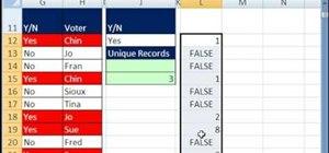 Count unique items with multiple criteria in Excel