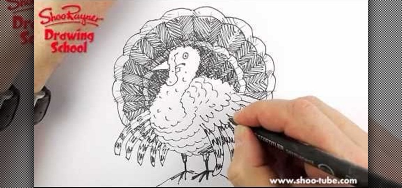 Decorate Turkey Drawing of a Thanksgiving Turkey