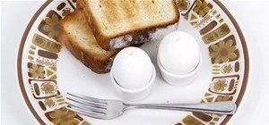 Make an Omelette Inside the Eggshell