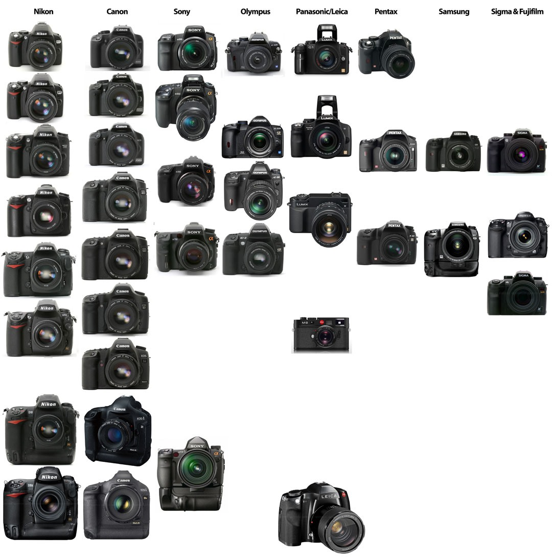So You Just Bought Your First DSLR. Now What?