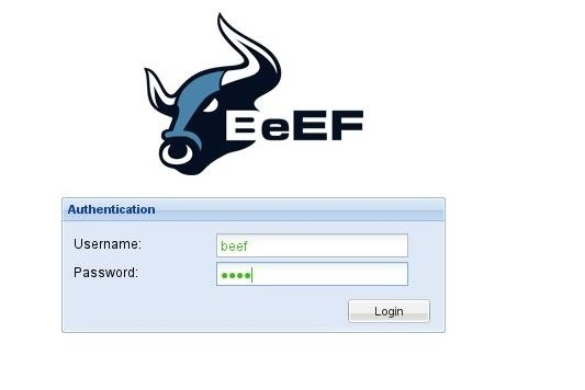 Exploiting XSS with BeEF: Part 2