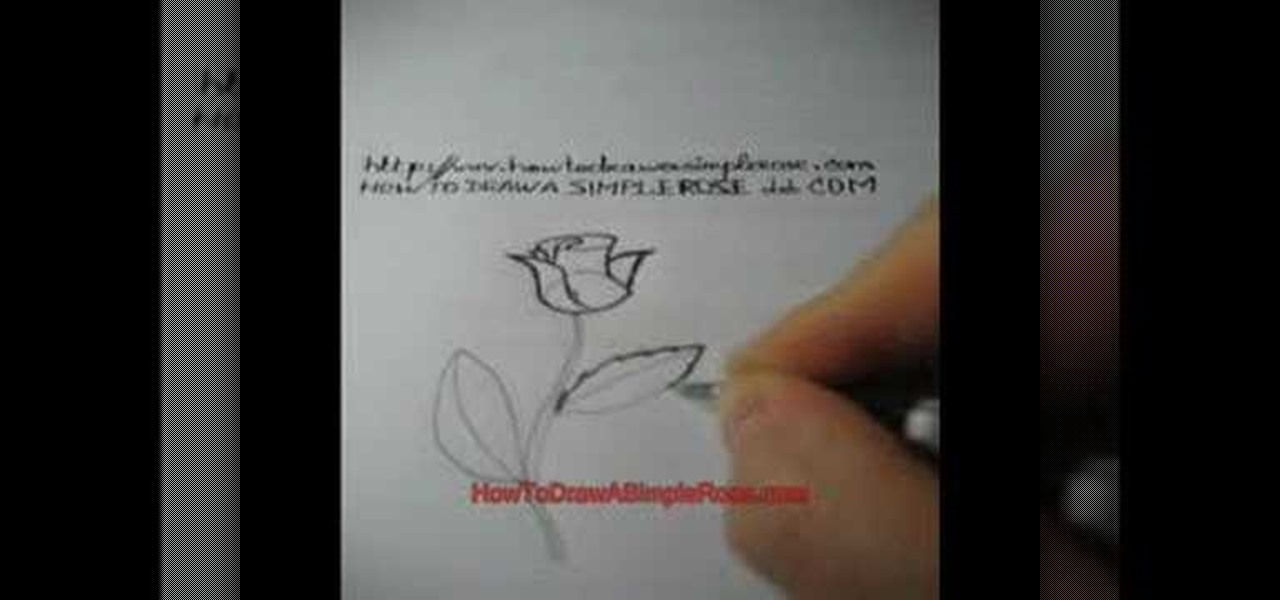 How to draw a pretty rose for beginners drawing for How to draw a rose step by step for beginners