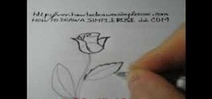 Draw a pretty rose for beginners