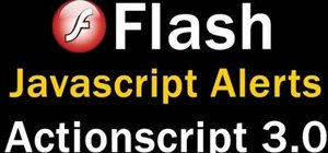 Script  a Java popup window and add it to your Flash based website