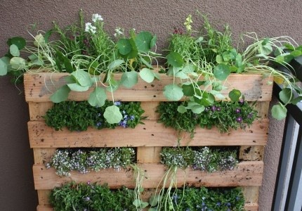 creative and unique diy planters to inspire your home garden, Beautiful flower