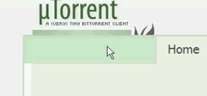 Use BitTorrent and download Torrents