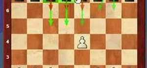 Use the most common first move in master chess games