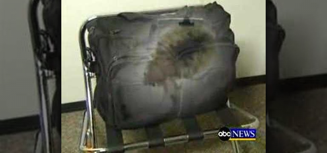 How To Spot Bed Bugs Hotel