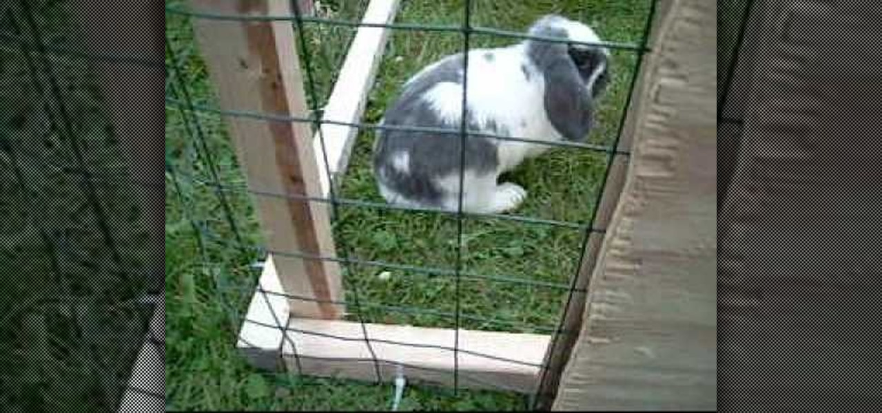 How to Build an outdoor rabbit run « Construction & Repair ...