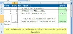 Use functions and formulas in Microsoft Excel 2007