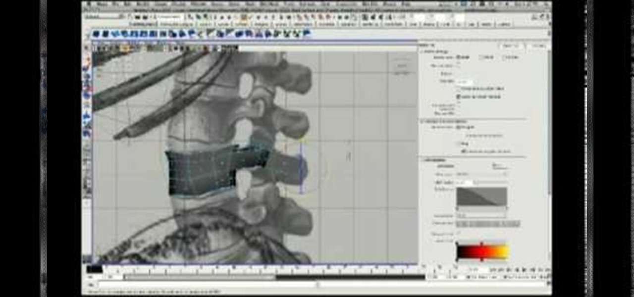 How to 3D model a skeleton torso using Maya « Maya