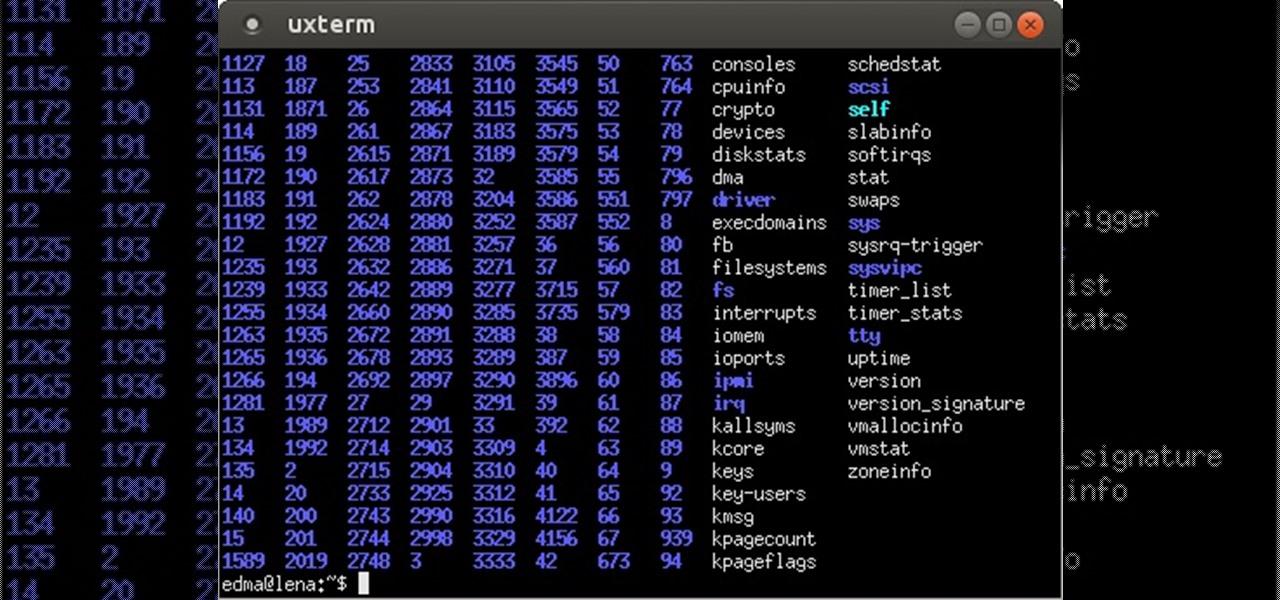 RootKits 101 (I). The Basics