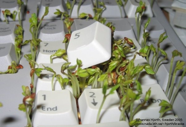 HowTo: Chia-Prank Your Co-Worker's Keyboard