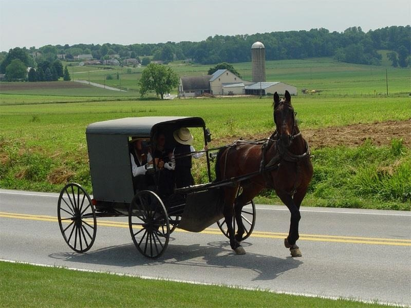 Amish New Mother with Stiff Neck & Jaw Diagnosed with Obstetric Tetanus, Emphasizing Need for Vaccinations