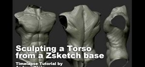 Sculpt a torso in Zbrush from a Zsketch base
