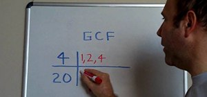 Find the greatest common factor (GCF)