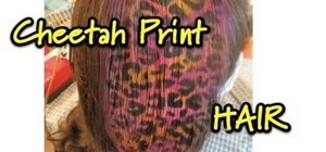 Style a colorful cheetah print on your hair
