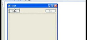 Make a screen capture program in Visual basic