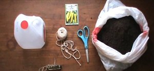 Make a self-irrigated planter for container gardening