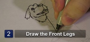 Draw a labrador retriever