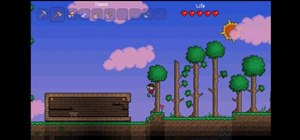 Survive Terraria's long first night