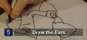 Draw a camel face