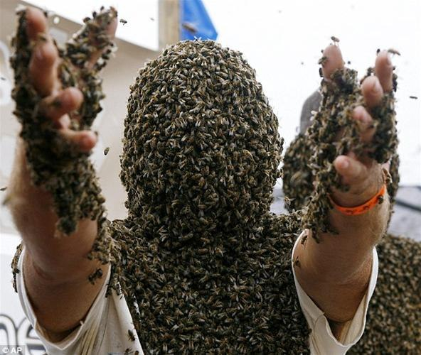 what-if-your-face-was-covered-50-000-bees.w654.jpg