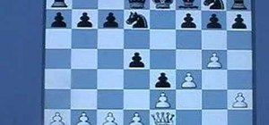 Master the Polar Bear System in chess