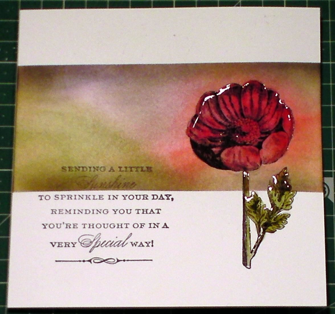 How to Ink, Blend & Stamp to Make a Poppy Card