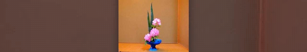 Why I Make Silk Flowers?