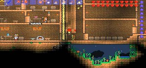 Build traps for single player and multiplayer Terraria