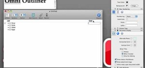 Use Omni Outliner for Mac OS X