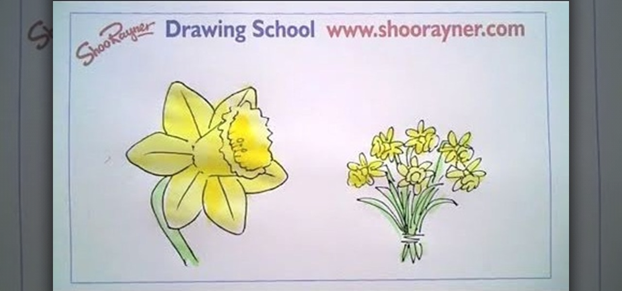 How To Draw A Daffodil For St David's Day « Drawing