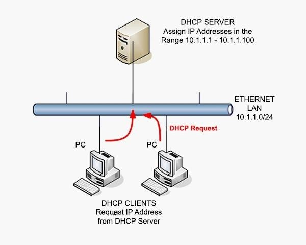 Hack Like a Pro: Networking Basics for the Aspiring Hacker, Part 1