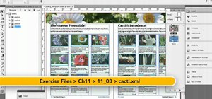 Import XML into the Adobe InDesign CS5 Product Sheet