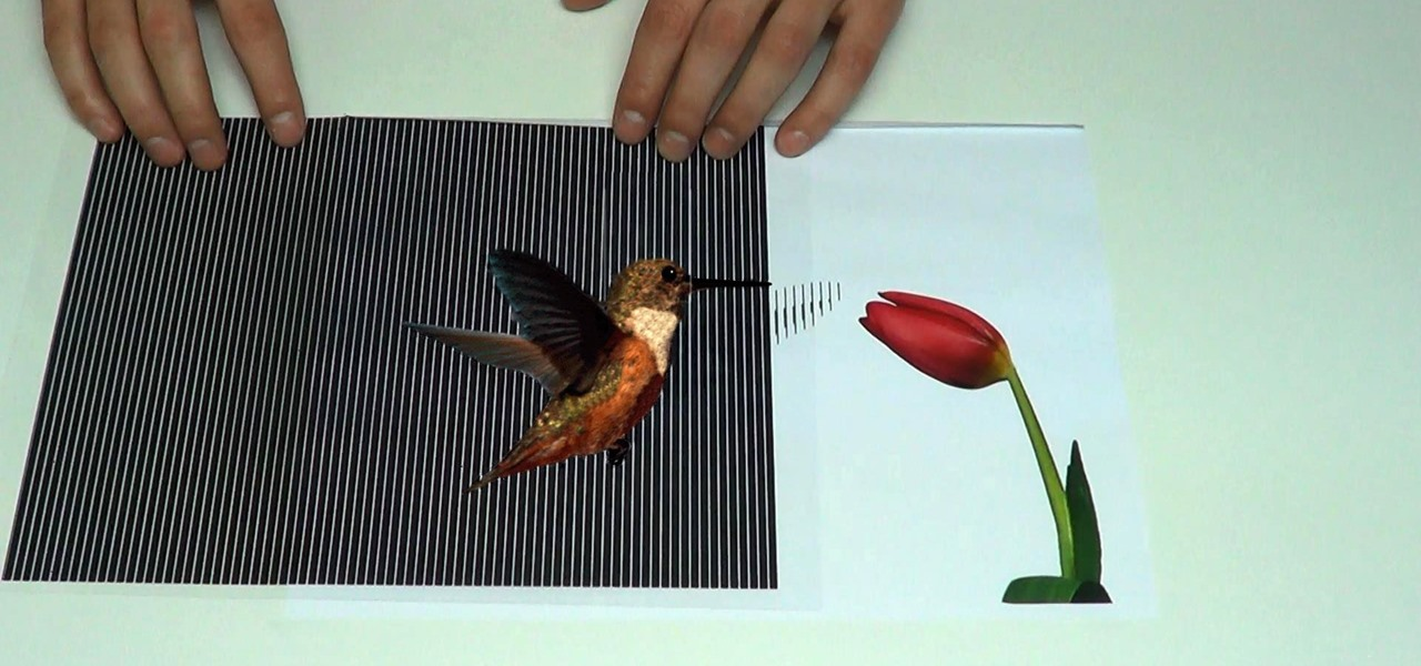 Amazing animated optical illusions papercraft wonderhowto for Animated optical illusions template